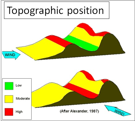 topographic position