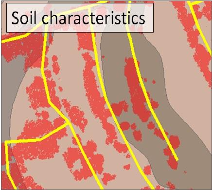 soil characteristics